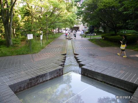2010060624国際版画美術館前の水辺はみどり