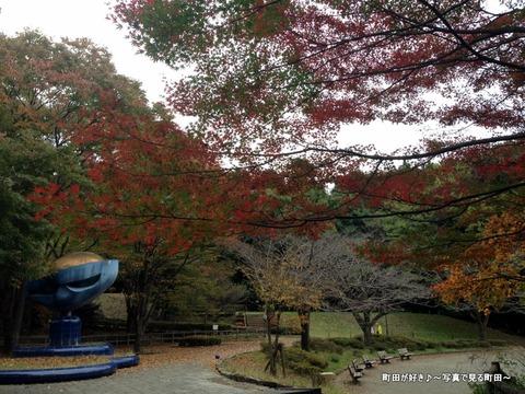 2015112201『芹ヶ谷公園』の風景