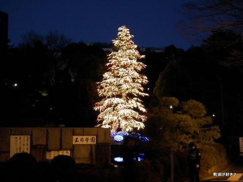 20101225010玉川学園クリスマスツリー