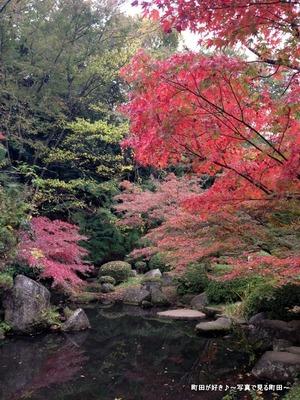 2015112204『芹ヶ谷公園』の風景