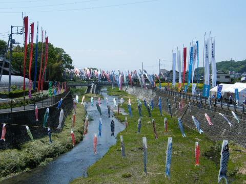 20090429083.jpg 平成21年第6回鶴見川泳げ鯉のぼり