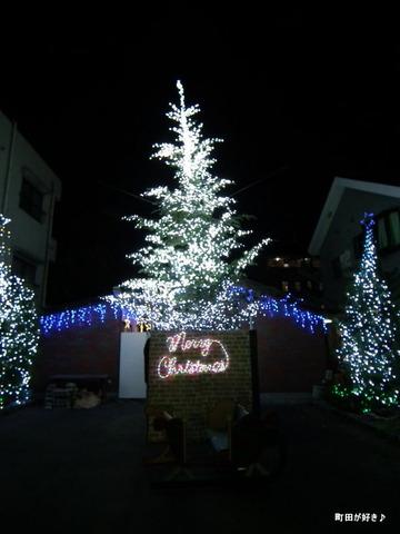 20101225038玉川学園クリスマスツリー