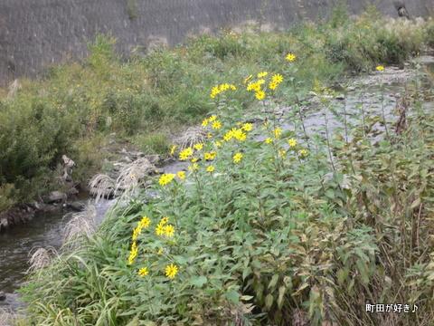 2009092725 境川