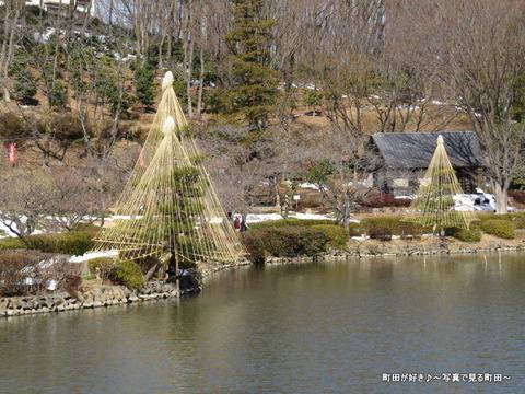 20140222013雪と梅の花@薬師池公園