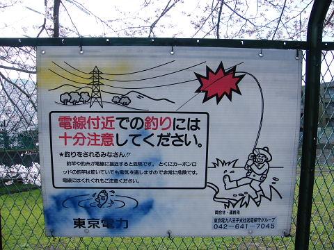 20080329074.jpg