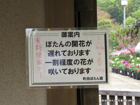 20140419104町田ぼたん園