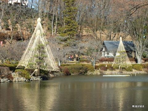 2012122433冬の薬師池公園