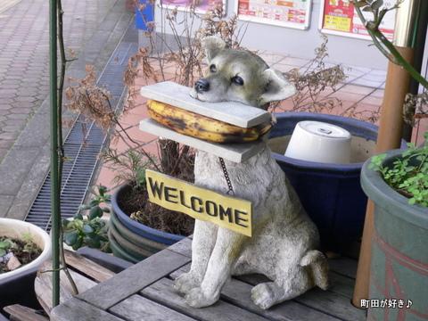 2009101803 バナナをくわえた犬