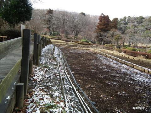 2012021831雪残る薬師池公園