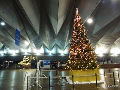 2009111469 横浜大さん橋のツリー