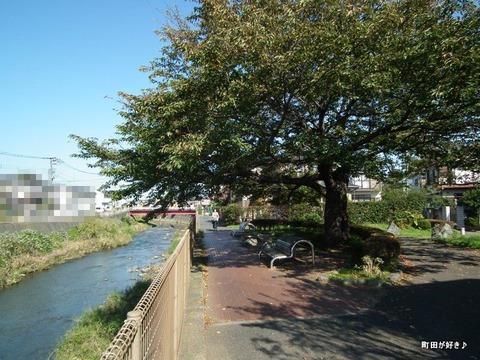 20101106039境川
