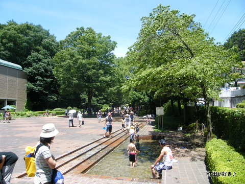 2010071918芹ヶ谷公園