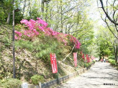 20100425106薬師池公園