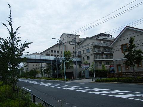 20080524132.jpg