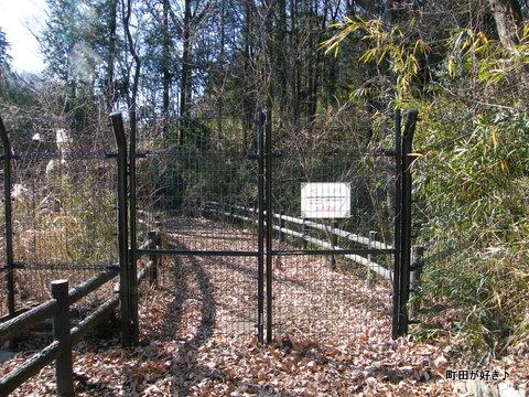 20100117077小山内裏公園の大田切池