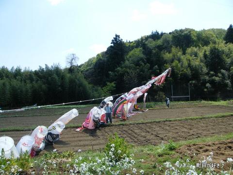 20100425031平成22年第7回鶴見川泳げ鯉のぼり