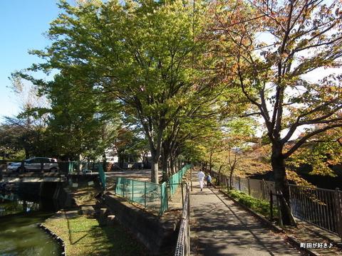 2010110302秋の恩田川弁天橋公園