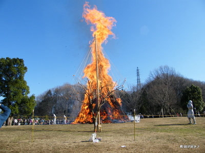 20100117148第8回小山内裏公園どんど焼き