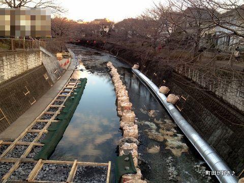 2012021902高瀬橋@恩田川