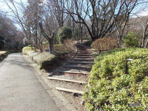2012122432土砂崩れ@薬師池公園