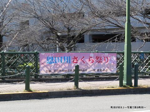2014031508恩田川さくら祭り