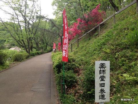 2012043037薬師堂旧参道のツツジの花