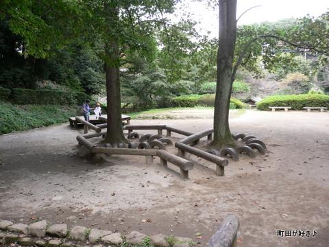 2009092338芹ヶ谷公園を歩く