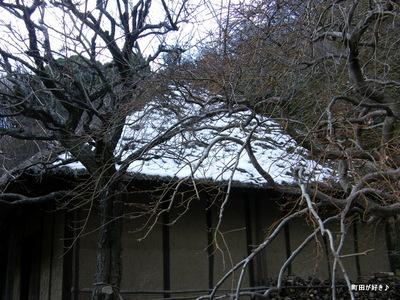 20100206071薬師池公園わらぶき屋根雪