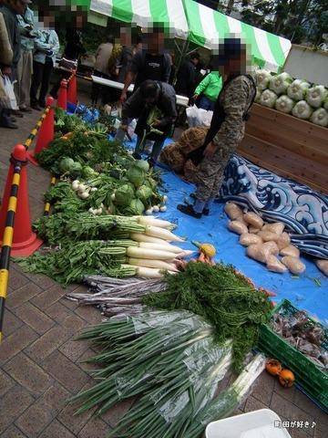 20101114083野菜宝船・野菜神輿