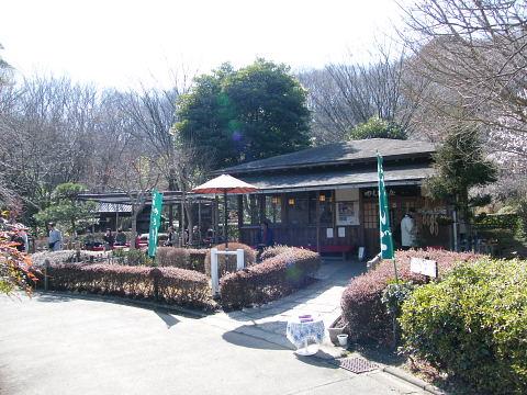 20090221026.jpg やくし茶屋