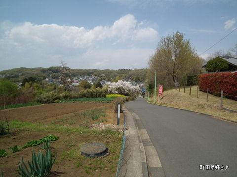 20110416072町田ぼたん園前