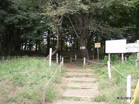 2009092717 金森山市民の森