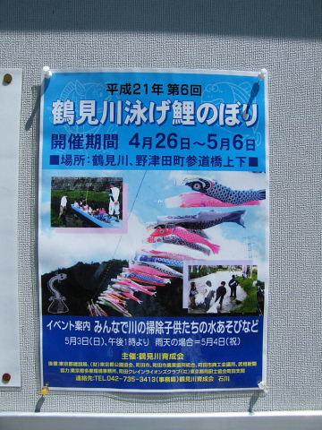 20090429120.jpg 平成21年第6回鶴見川泳げ鯉のぼり
