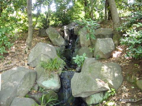 20100612183薬師池公園