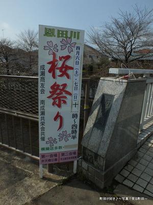 2013032053恩田川桜祭り