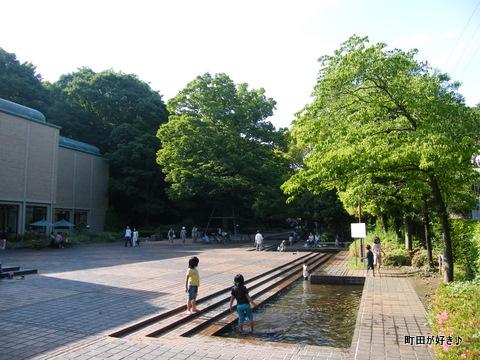 2010060620国際版画美術館前の水辺はみどり