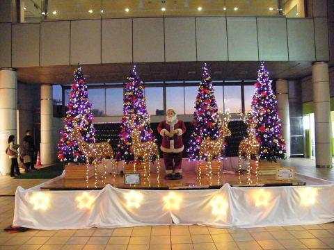 2008112903.jpg 町田ターミナルプラザのクリスマスツリー