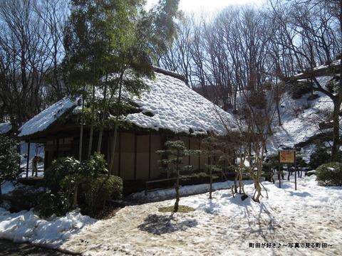 20140222023雪と梅の花@薬師池公園