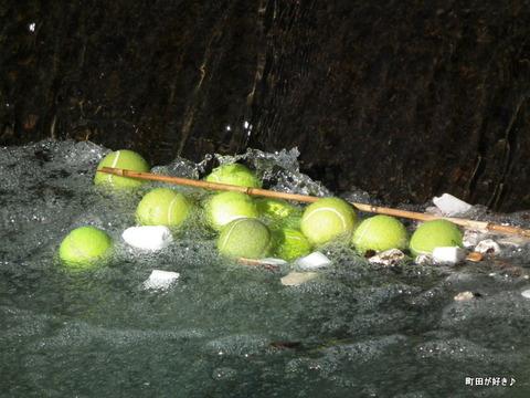 20101204021恩田川テニスボール