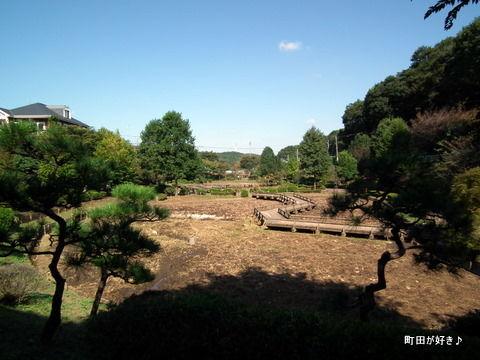 2010102334薬師池公園