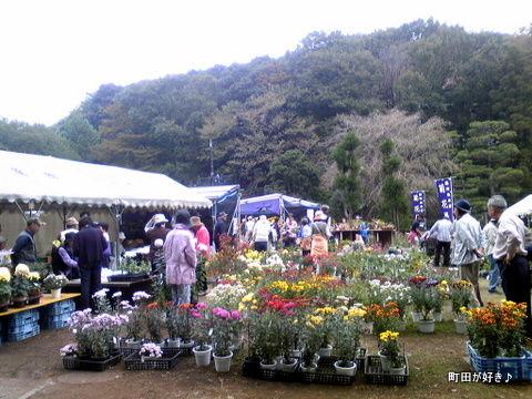20111105112第18回町田市菊花展