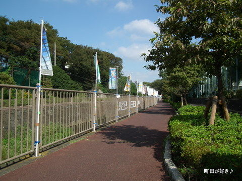 20110919003南大谷中学校フラッグアート