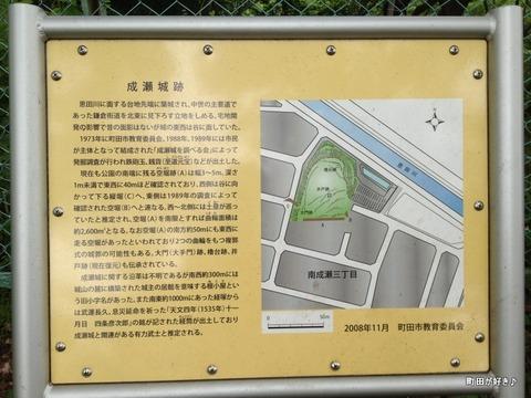 2012062303成瀬城跡