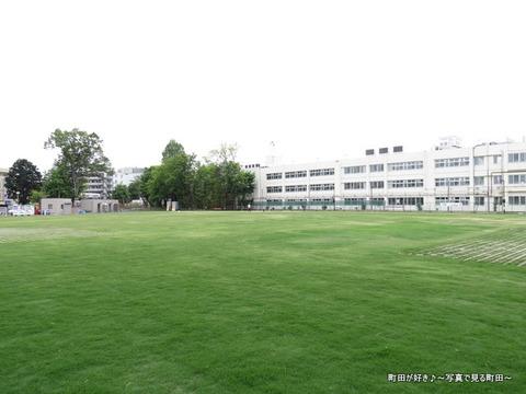 2014050662芝生広場「町田シバヒロ」