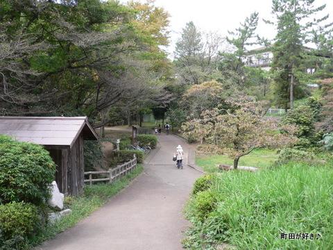 2009092339 芹ヶ谷公園を歩く