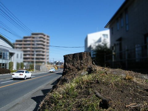 20090208100.jpg 鎌倉街道・鶴川街道工事