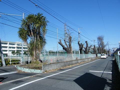 20090208113.jpg 都市計画道路3・4・33号線(中町)道路築造工事