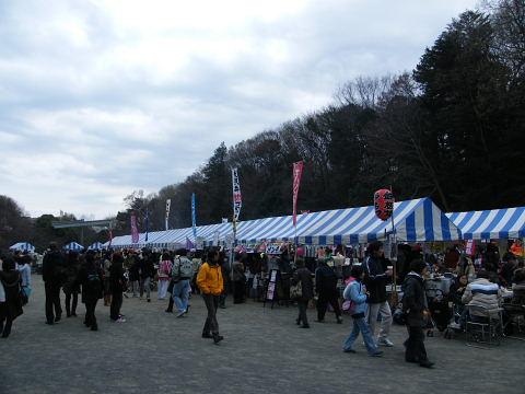 2009032857.jpg 2009芹ヶ谷公園さくら祭り