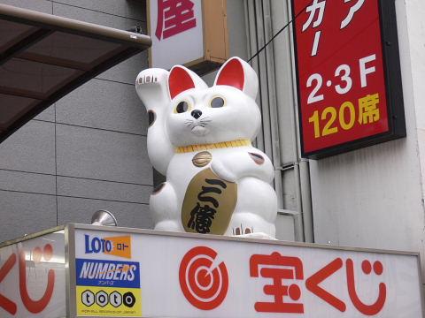 2008082314.jpg 大〜きな招き猫