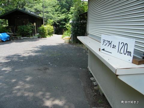 20100612059町田えびね苑<アジサイ>